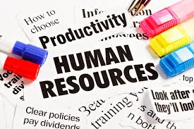 Human Resource Practices Consultants
