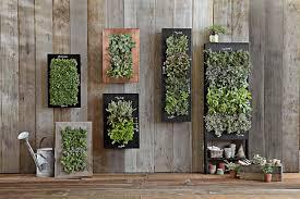 Vertical Herb Garden In Your Kitchen Vertical Garden Design Hgtv