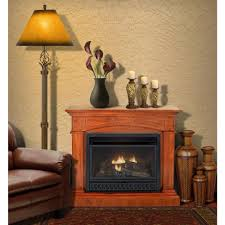natural gas fireplace ventless. Convertible Vent-Free Dual Fuel Gas Fireplace In Cherry Natural Ventless E