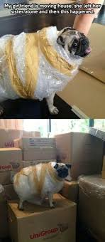 Packing Memes on Pinterest | How To Keep Calm, Boxes and Forts via Relatably.com