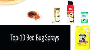 natural termite killer. Unique Natural Natural Termite Killer Bed Bug Best Sprays Photo Homemade Repellent How To  Make Extermination Control Get Rid Of Termites Flying R In