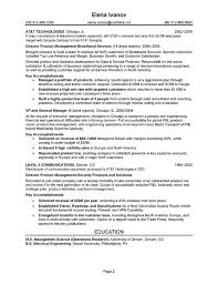 Telecom Executive Resume Sample