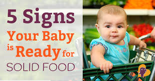 5 Month Old Baby Solid Food Chart Starting Solids 5 Signs Your Baby Is Ready For Solid Food