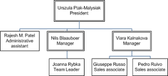 Lay Out The Shapes In Your Organization Chart Visio