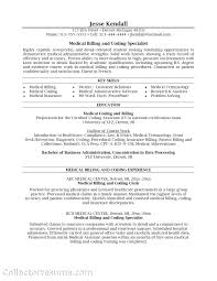 Budget Administrator Sample Resume Template Health Insurance Template Resume For Hospital 10