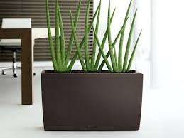modern office plants. Modern Office Plants Indoor Planters Collection From Desk E