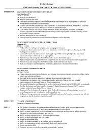 Business Development Lead Resume Samples Velvet Jobs