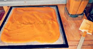 how to make fruit leather dehydrator rack homesteadlady com