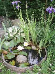 Small Picture The 25 best Mini pond ideas on Pinterest Container fish pond