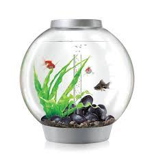 Fish Tank Amazoncom Biorb Classic 60 Aquarium With Led Light 16 Gallon