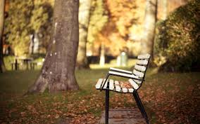 Park bench autumn Wallpapers | Pictures