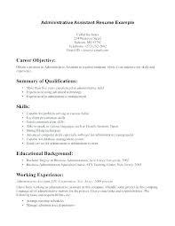 Good Summary For Resume