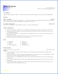 Sample Resume Objective For Accounting Position Best of 24 Sample Accounting Resume Objective SampleResumeFormats24