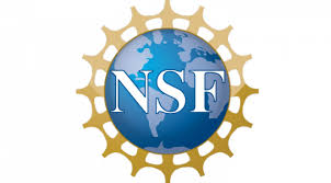 Nsf logo no background 5 » Background Check All