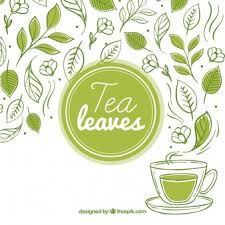 vintage tea cups vector. Wonderful Tea Tea Leaves Background With Tea Cup On Vintage Cups Vector