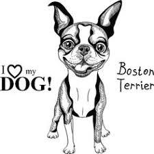 Small Picture Boston Terrier clipart anime boston Pencil and in color boston