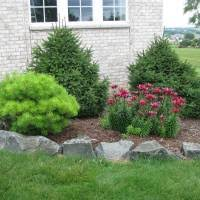 Landscaping Design Ideas For Front Of House Modern Landscaping Ideas For Front House With Pine Trees And Red Flower Also Natural