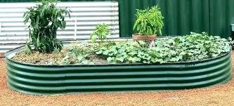 corrugated raised garden bed beds frugal gardening metal gard corrugated metal raised garden bed