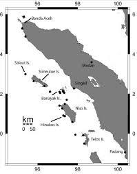 Jungle Heat Map Design Deep In The Jungle Nias Island Asia Exchange