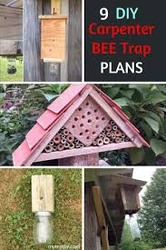 9 diy carpenter bee trap plans free list