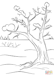 Small Picture Winter Tree coloring page Free Printable Coloring Pages