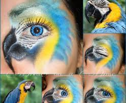 blue macaw this is amazing cool eyes bird makeup crazy eye makeup