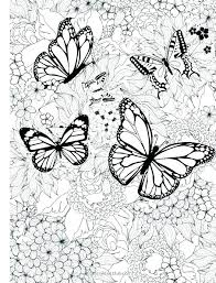 Beautiful Complicated Butterfly Coloring Pages Photos Coloring