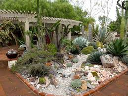 best of outdoor succulent garden design perfect 1024 768 in succulents