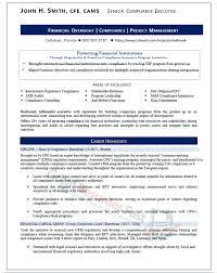 Senior Compliance Executive Resume Sample - Page 1