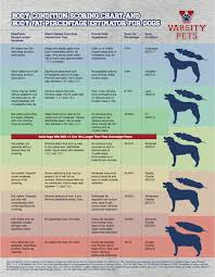 46 Timeless What Can Dogs Eat Chart