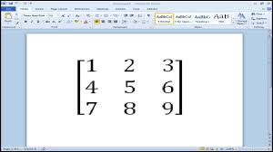 how to put a bracket around a matrix in microsoft word