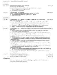 Business School Resume Sample Simple Resume Template Business School Resume Template Simple 9