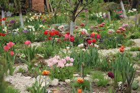 Намерете всичко което търсите за цветна градина. Cvetelina Ilieva Vdhnovyava Ss Zeleni Iniciativi Cvetna Gradina Antikonsumatorstvo I Pisane Na Pisma Vrhu Hartiya Duht Na Pleven
