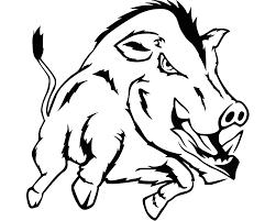 Image result for hog hunting illustration