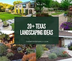 best texas backyard landscaping ideas