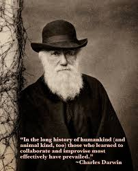 Engineering Quote Of The Week Charles Darwin An Engineer's Aspect Impressive Darwin Quotes