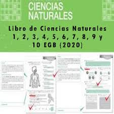 Esta es la discusión relacionada libro de ciencias naturales 6 grado pdf 2019. Libro De Ciencias Naturales 1 2 3 4 5 6 7 8 9 Y 10 Egb 2021 Elyex