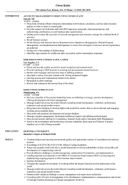 Executive Consultant Resume Samples Velvet Jobs