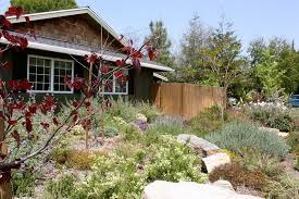 Small Picture Low Maintenance Front Yard Landscaping Landscaping Network