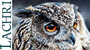 time lapse eagle owl oil over acrylic photorealistic sd painting demonstration by lachri you
