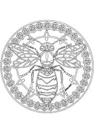 Mandala Kleurplaten Vlieg Color Pages Bee Coloring Pages