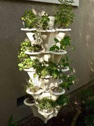 Hydroponics Herb Garden Kitchen Indoor Herb Garden Indoor Plants Expert