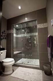 bathroom design ideas walk in shower. Beautiful Walk Basement Shower Inside Bathroom Design Ideas Walk In O