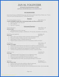 Resume Format Samples Word Best Resume Template Download Word A