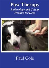 Paw Therapy Reflexology And Colour Healing For Dogs