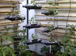 Small Picture Vegetable garden design ideas small gardens