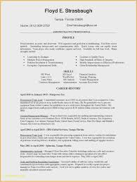 Quick And Easy Cover Letter Examples New Sales Cover Letter Free