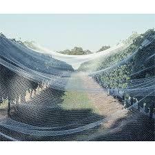 Saxon 13 X 13mm Hexagonal Wire Animal Netting  Bunnings WarehouseFruit Tree Netting Bunnings