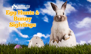 real sightings of the easter bunny. Beautiful Bunny 2018 Easter Egg Hunts And Bunny Sightings In Huntsville North Alabama To Real Of The O