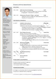 2018 Professional One Page Resume Template Customize Resume Template